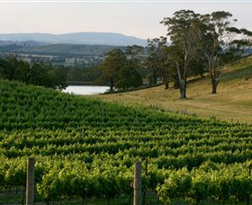 Granite Hills Winery - Accommodation in Brisbane