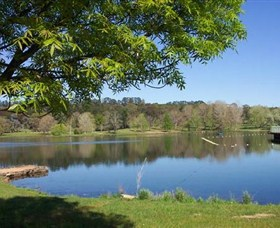 Lake Canobolas Reserve - Accommodation in Brisbane