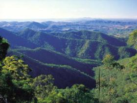 Kroombit Tops National Park - Accommodation in Brisbane