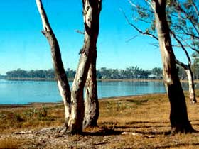 Lake Broadwater Conservation Park - Accommodation in Brisbane