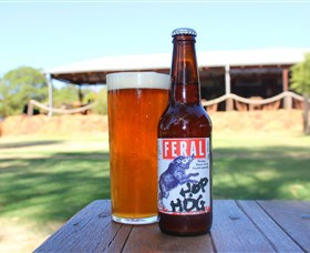 Feral Brewing Company - Accommodation in Brisbane