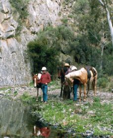 Yarramba Horse Riding - Accommodation in Brisbane