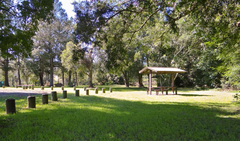 Moore Park picnic area - Accommodation in Brisbane