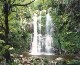 Budderoo National Park - The Falls Walk - Accommodation in Brisbane
