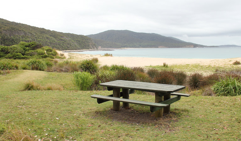 Depot Beach picnic area - Accommodation in Brisbane