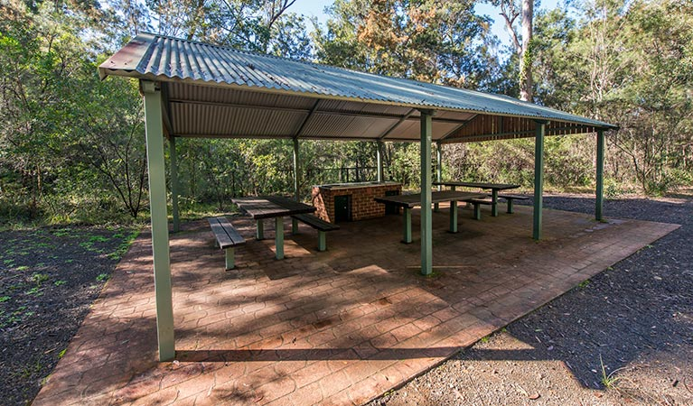 Brimbin picnic area - Accommodation in Brisbane