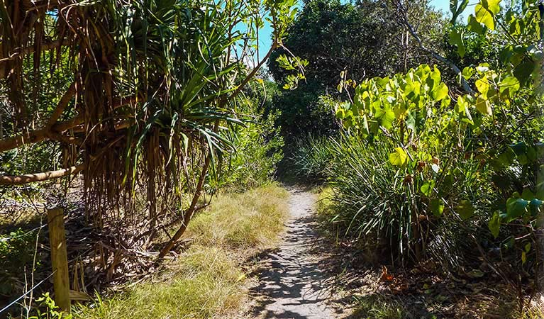 North Head walking track
