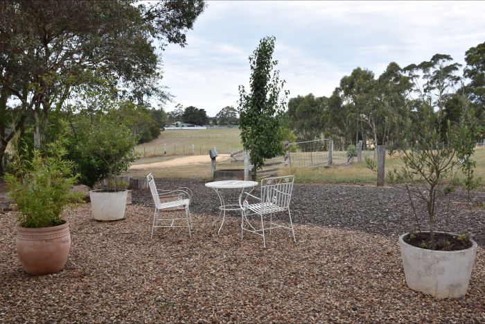 Cygnet Park Country Retreat - Accommodation in Brisbane