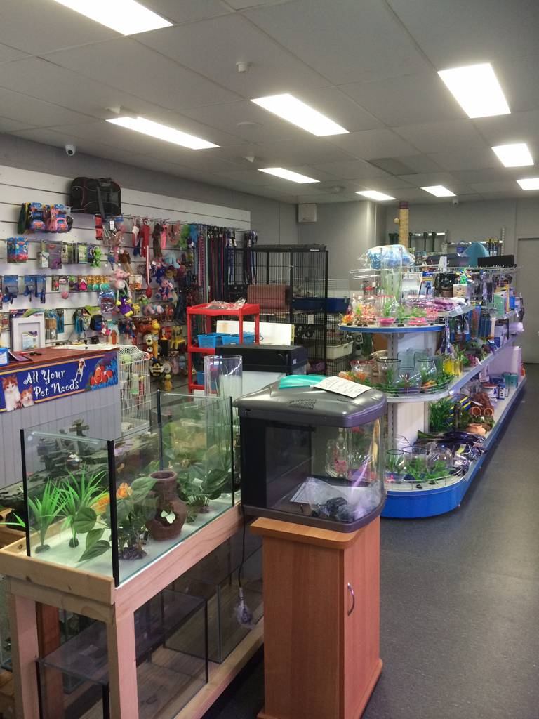 Nambour Pet Shop - Accommodation in Brisbane