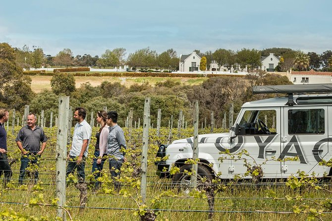 Voyager Estate Margaret River: Winery Tour and Tasting with 4-Course Lunch or 7-Course Vineyard-to-Table Experience