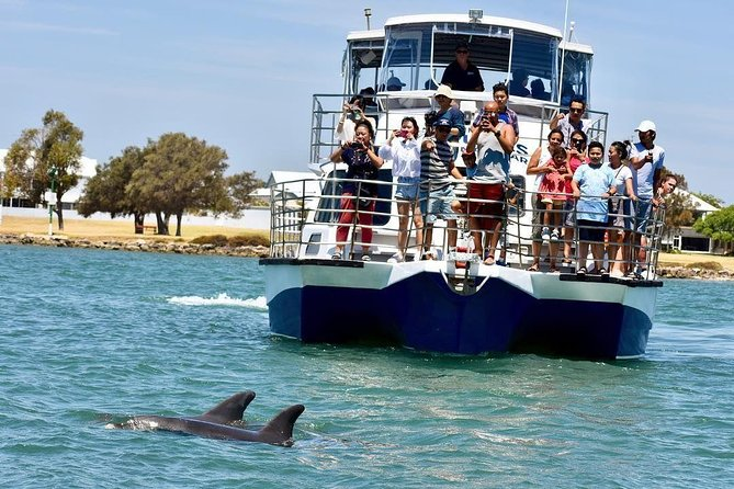 Mandurah Dolphin and Scenic Canal Cruise - Accommodation in Brisbane