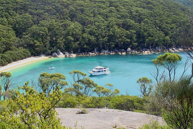 Wilsons Promontory Full Day Cruise - Accommodation in Brisbane
