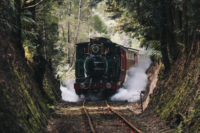 West Coast Wilderness Railway River and Rainforest from Strahan - Accommodation in Brisbane
