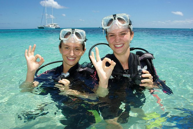 Ocean Spirit Michaelmas Cay Dive and Snorkel Cruise from Palm Cove - Accommodation in Brisbane