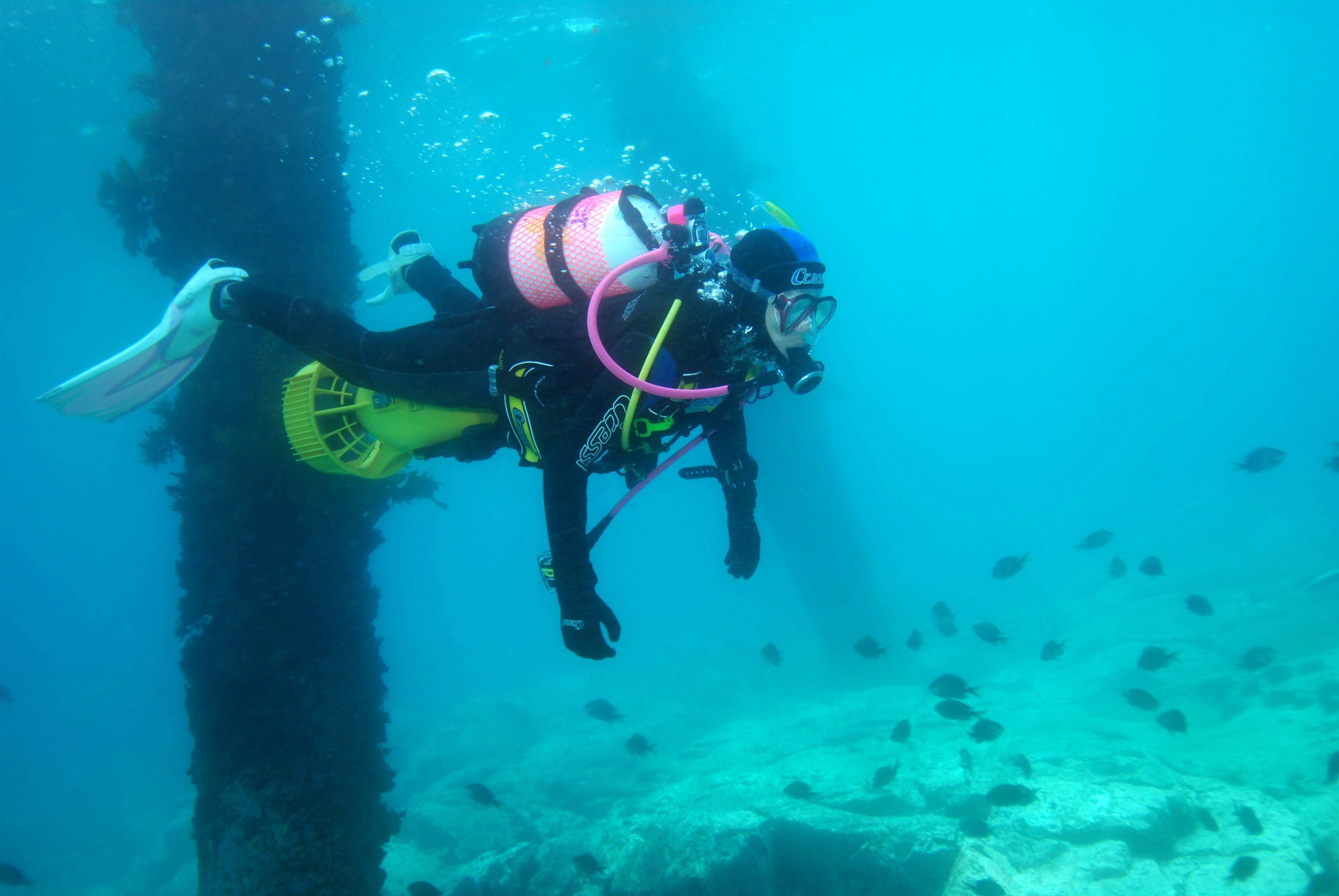 Shellharbour Scuba  and Photography Centre - Accommodation in Brisbane