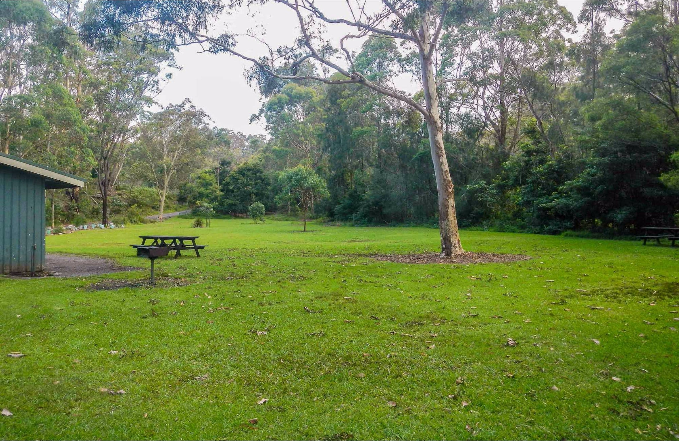 Haynes Flat picnic area - Accommodation in Brisbane