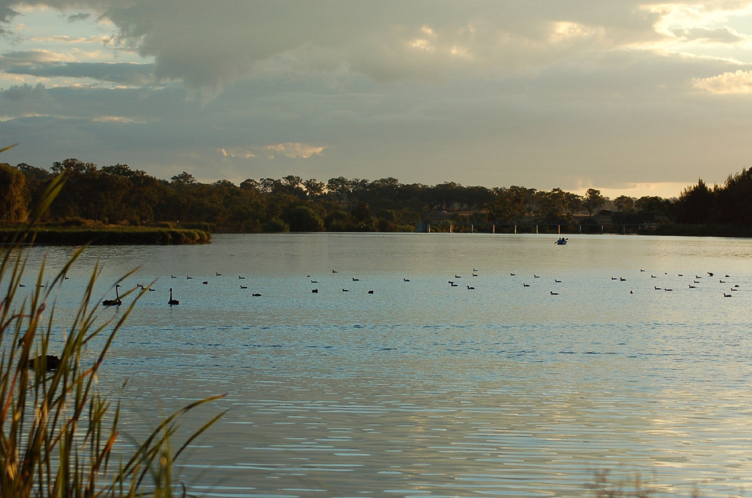 Lake Inverell Reserve - Accommodation in Brisbane