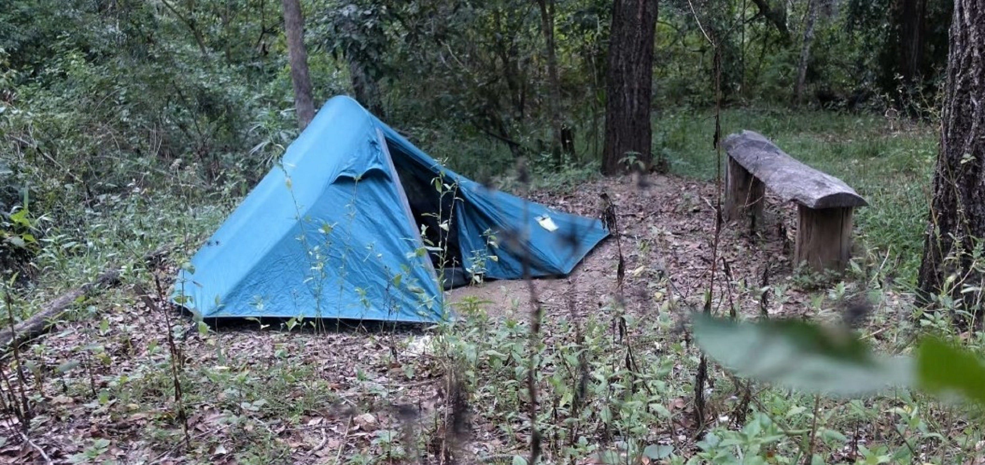 England Creek Bush Camp - Accommodation in Brisbane