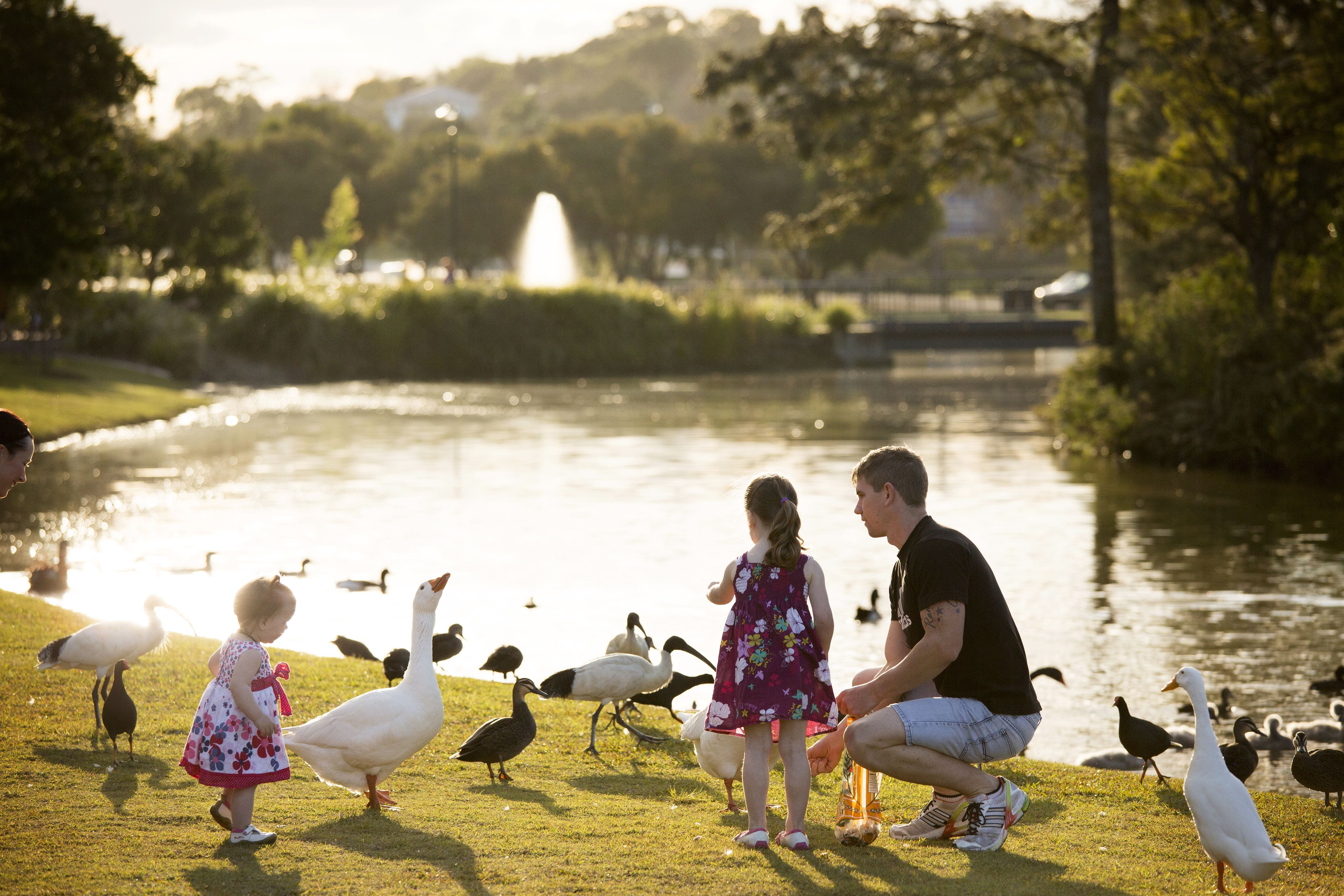 Lake Alford Recreational Park - Accommodation in Brisbane