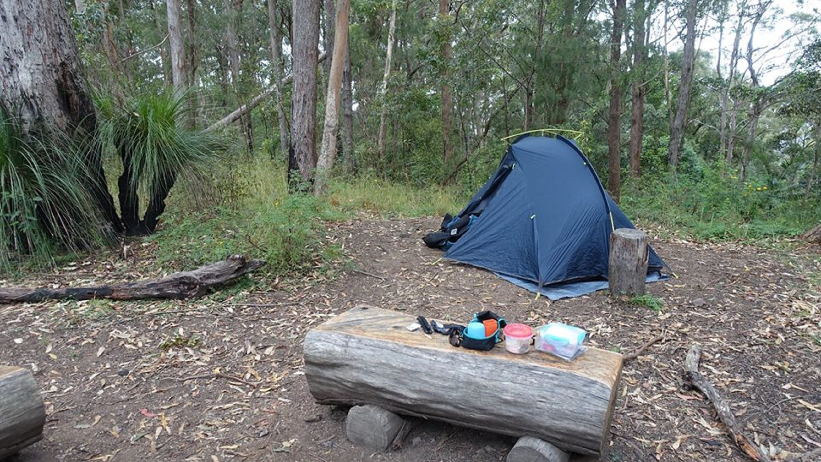 Northbrook Mountain Bush Camp - Accommodation in Brisbane