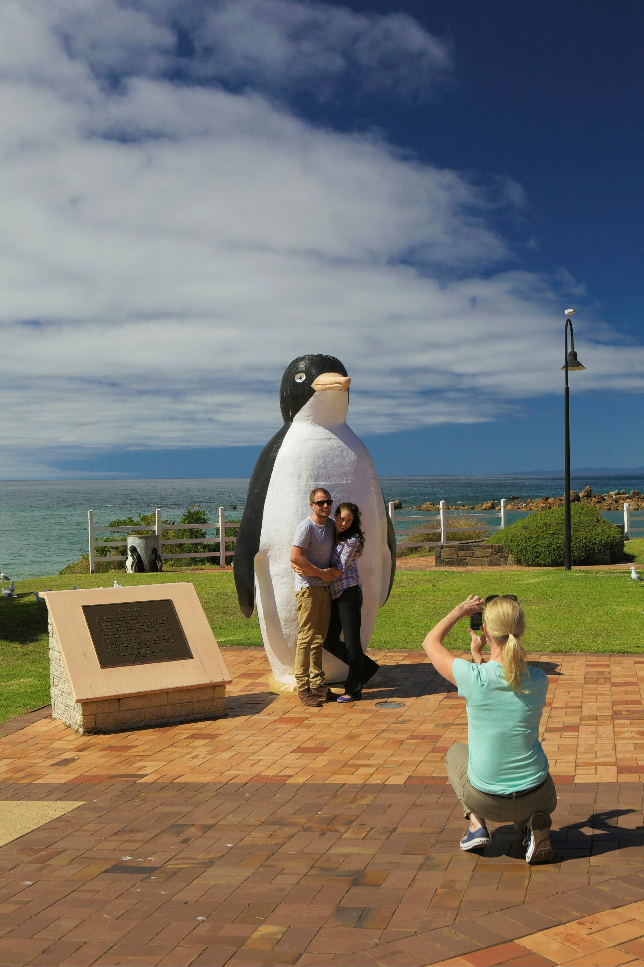 Penguin - Accommodation in Brisbane