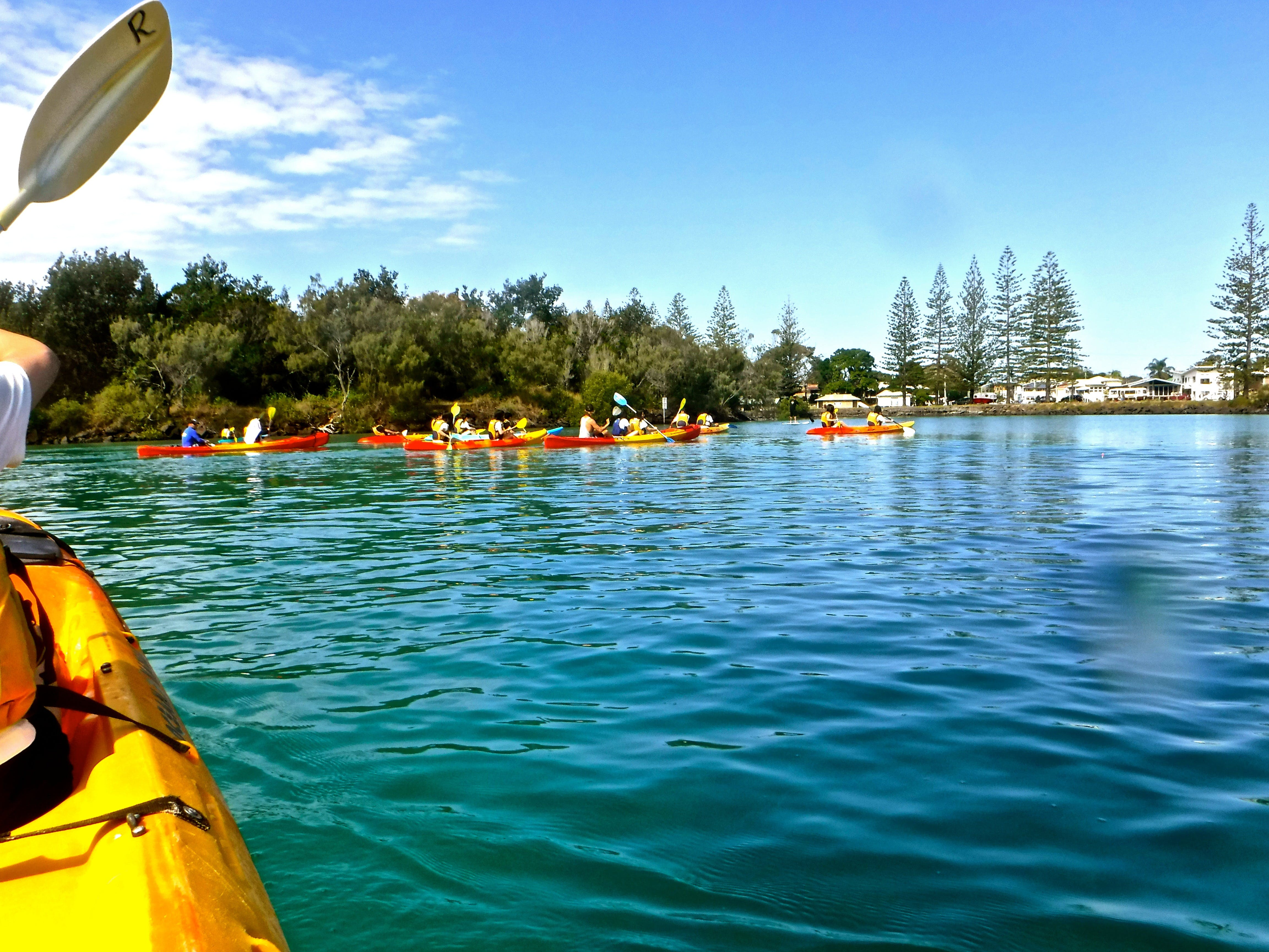 Byron Bay River Nature Kayak Tour - Accommodation in Brisbane
