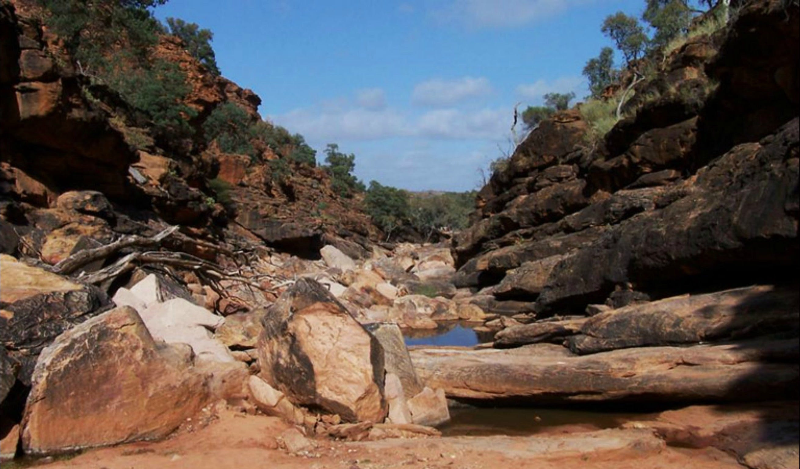 Homestead Gorge trail - Accommodation in Brisbane