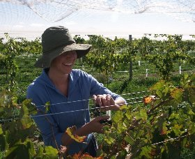 Kingsdale Wines - Accommodation in Brisbane