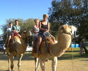 Calamunnda Camel Farm - Accommodation in Brisbane