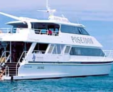 Poseidon Outer Reef Cruises - Accommodation in Brisbane