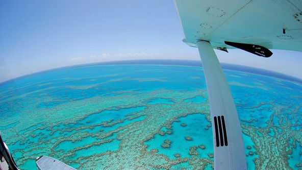 Air Whitsunday Day Tours - Accommodation in Brisbane
