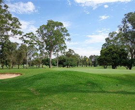 Singleton Golf Club - Accommodation in Brisbane