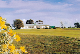 Lucindale Country Club - Accommodation in Brisbane