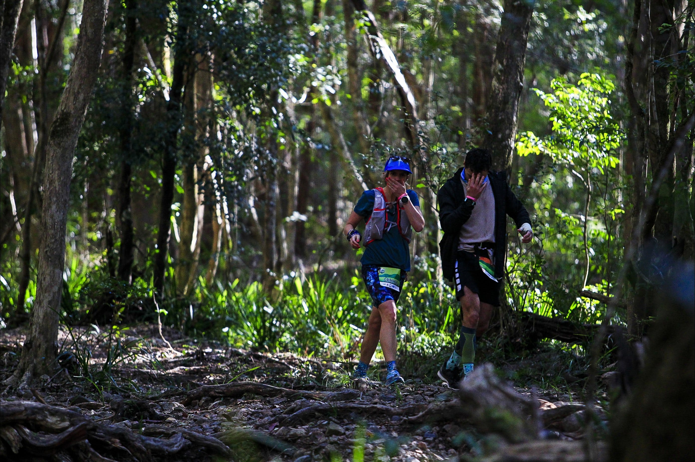 Elephant Trail Race - Accommodation in Brisbane