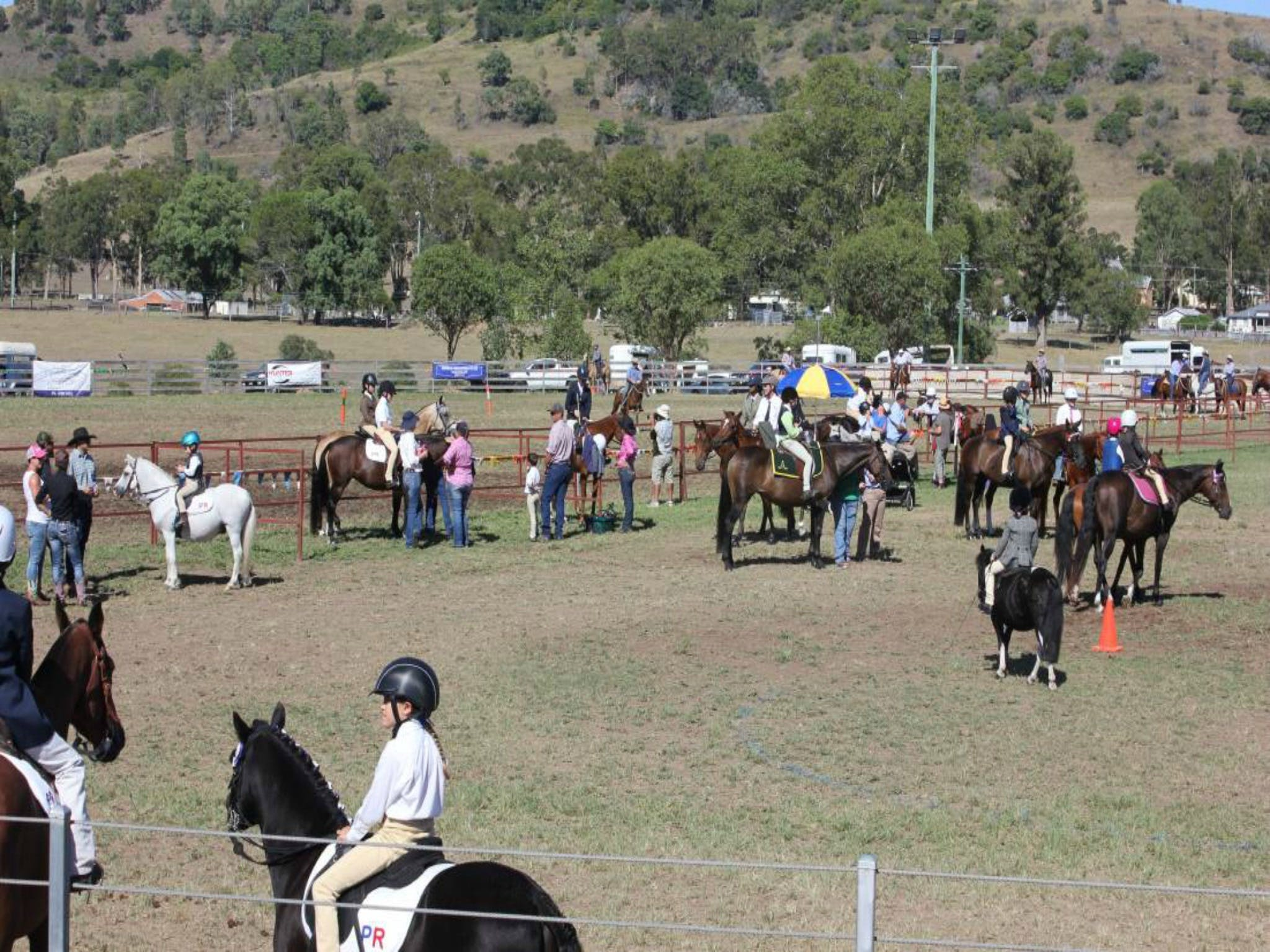 Gresford Agricultural Show - Accommodation in Brisbane