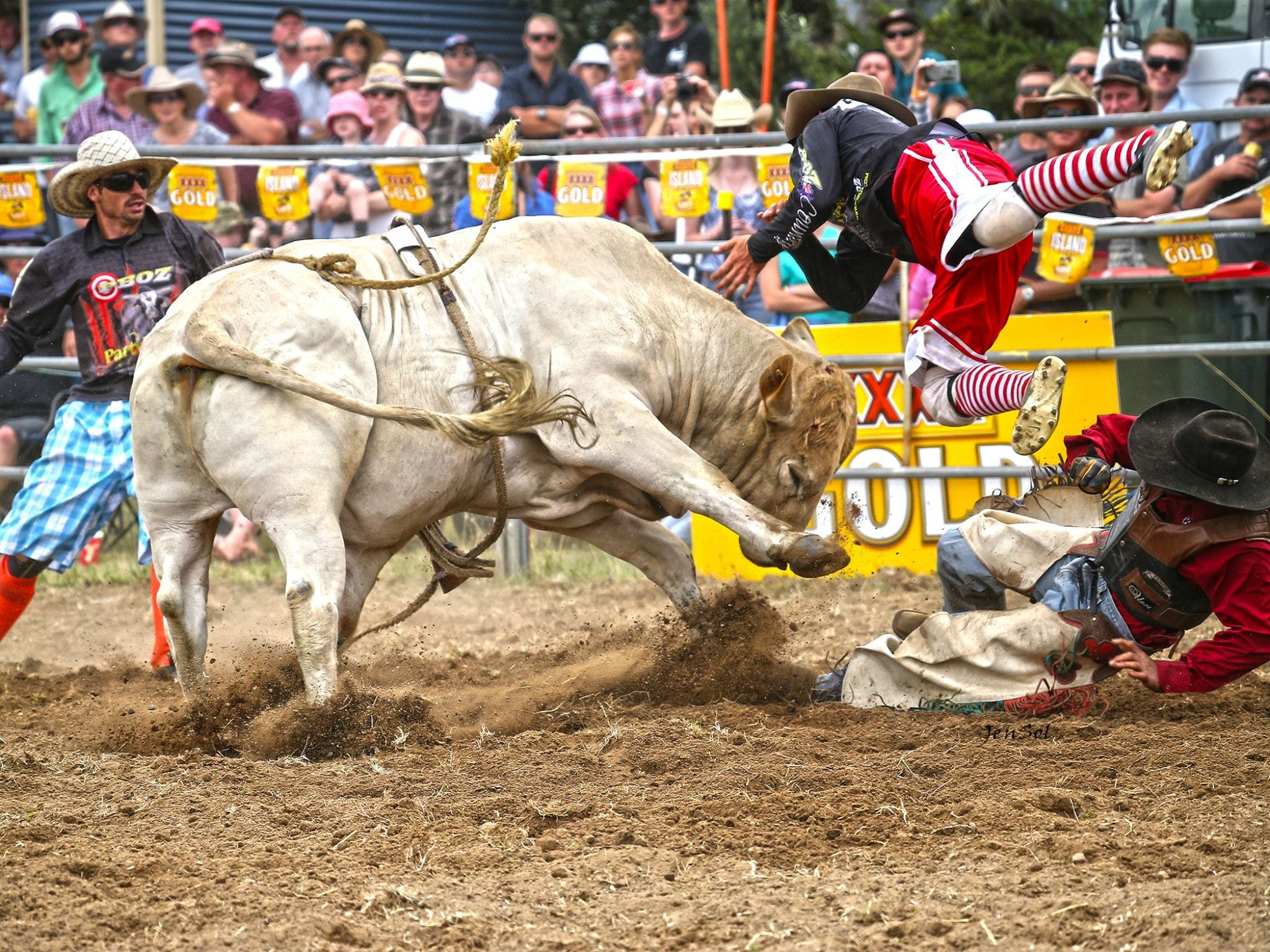 Jindabyne's Man From Snowy River Rodeo - Accommodation in Brisbane