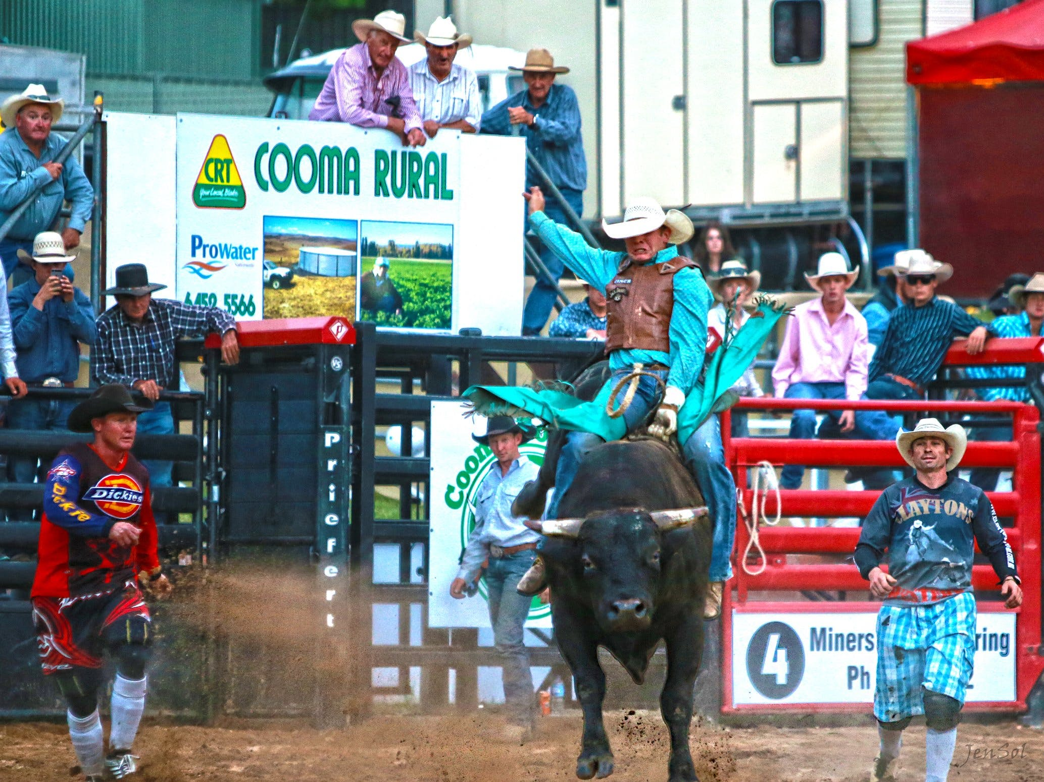 AgriWest Cooma Rodeo - Accommodation in Brisbane