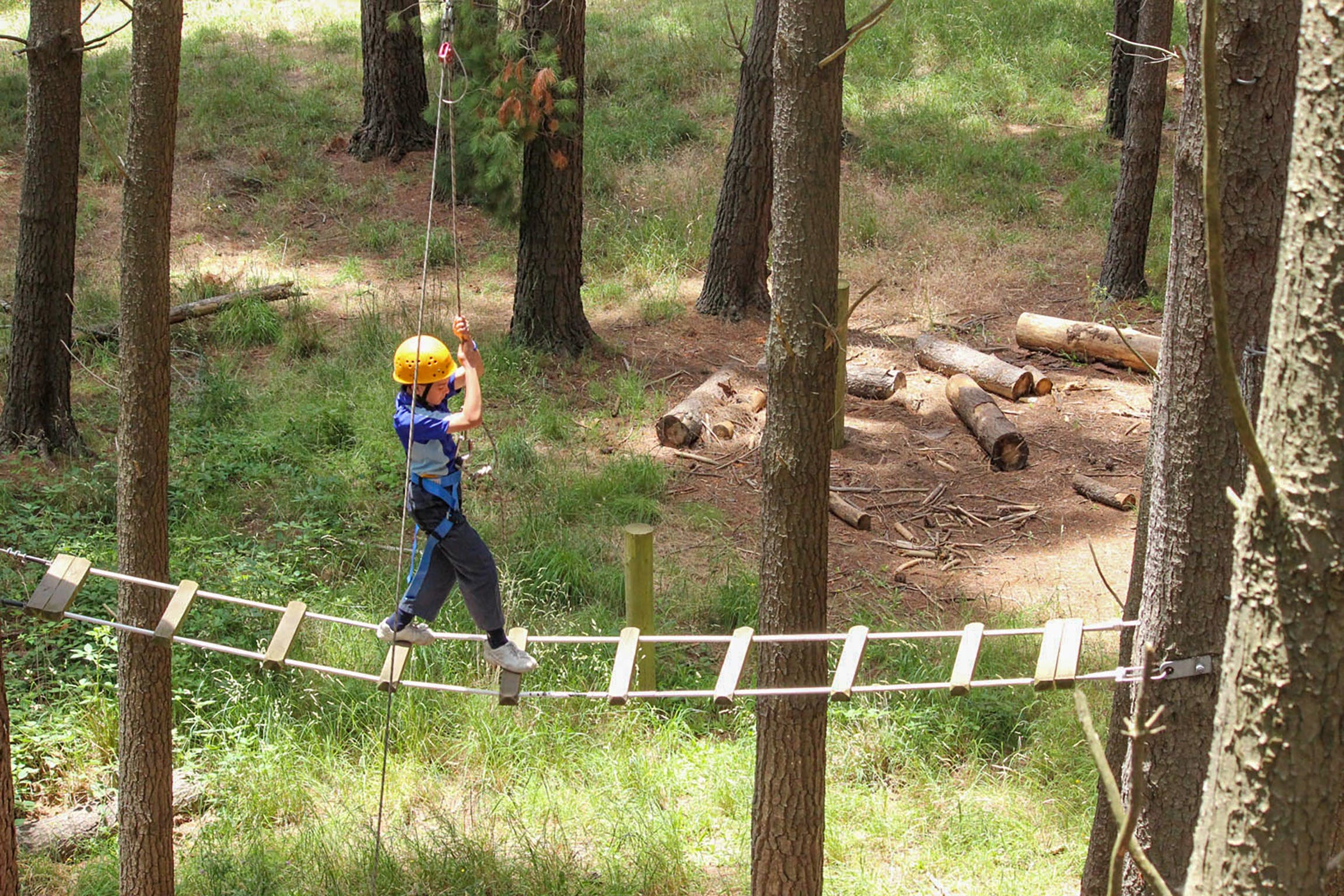 July 2020 Holidays- Go Wild at the Mt Lofty Adventure Hub - Accommodation in Brisbane