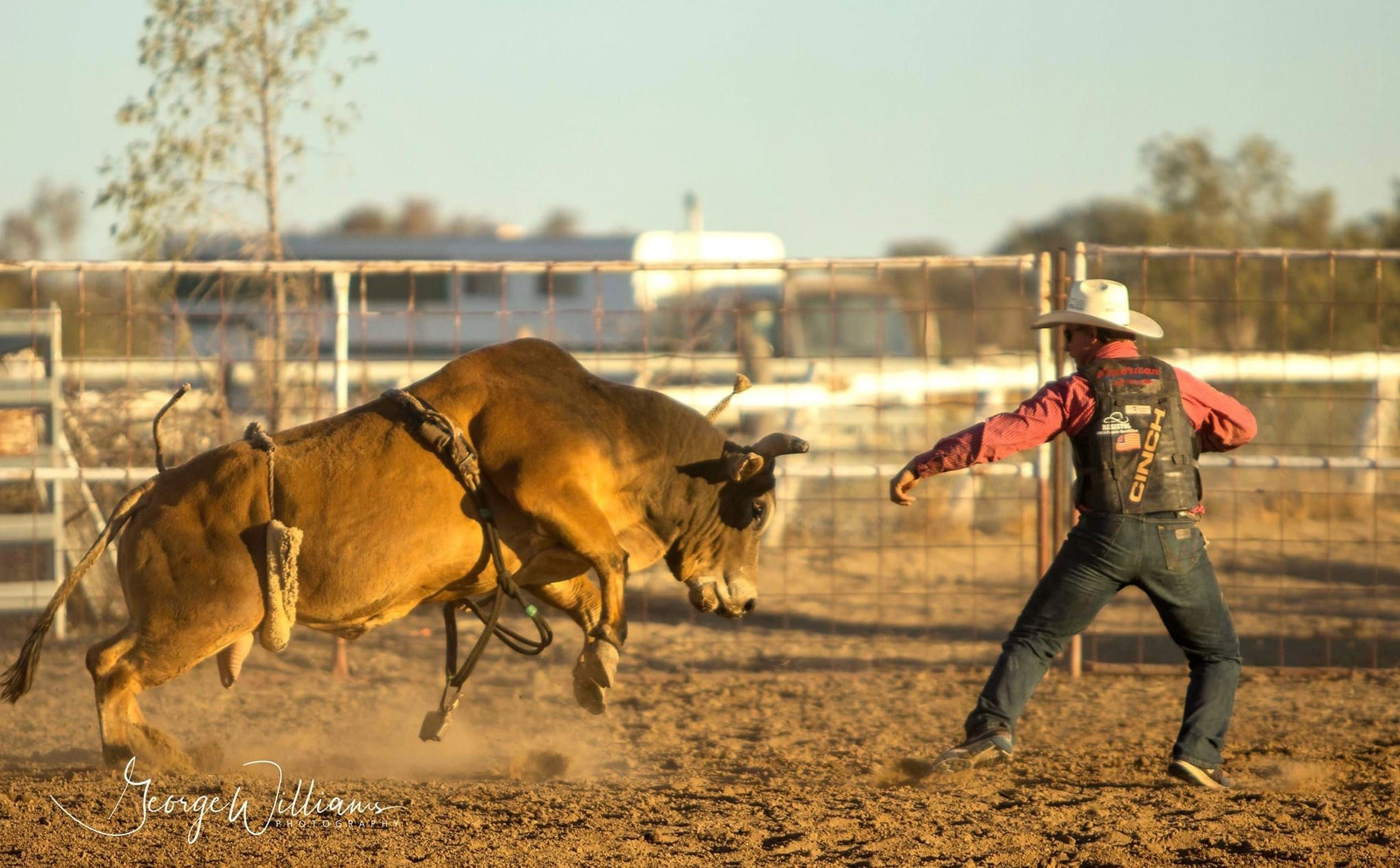 Walgett Charity Bushman's Carnival Rodeo and Campdraft - Accommodation in Brisbane