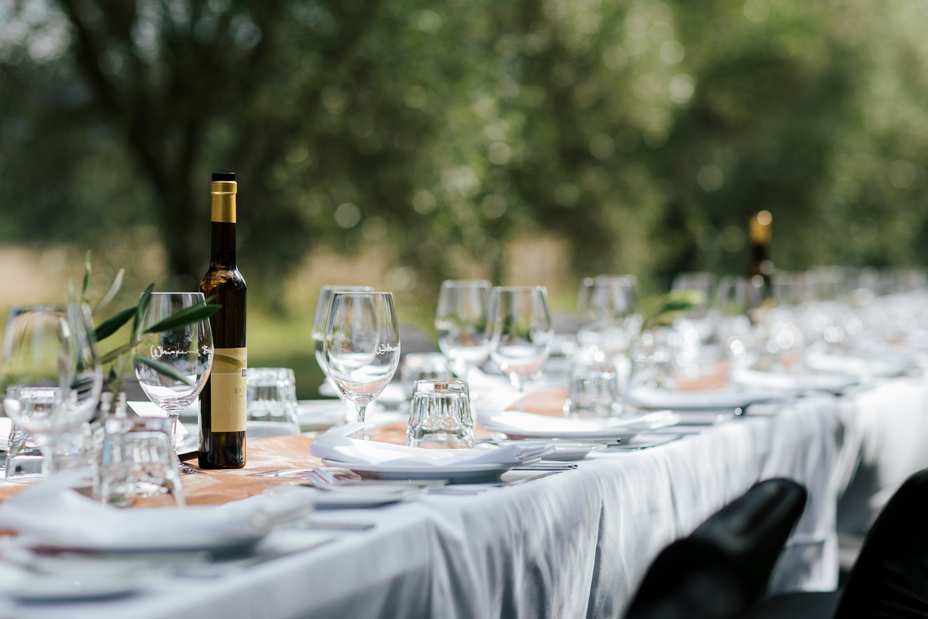 Whispering Brook Olive Long Table Luncheon - Accommodation in Brisbane