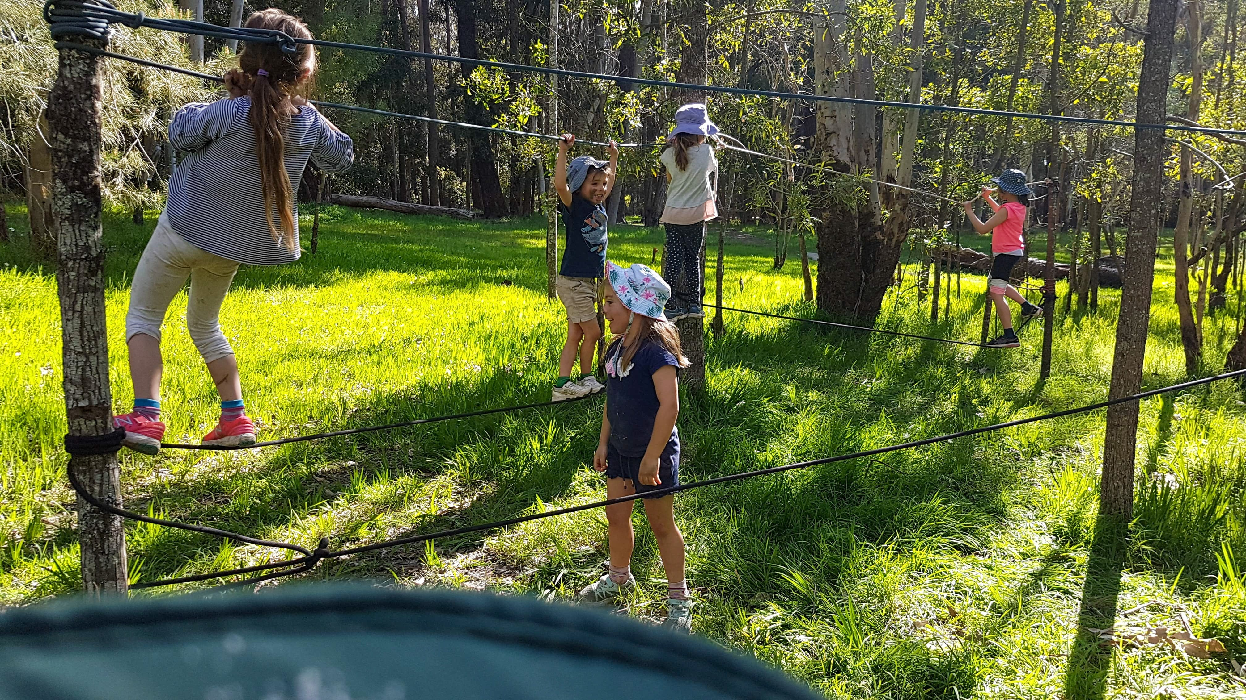 July 2020 Holidays- Forest Smores  Explore - Accommodation in Brisbane