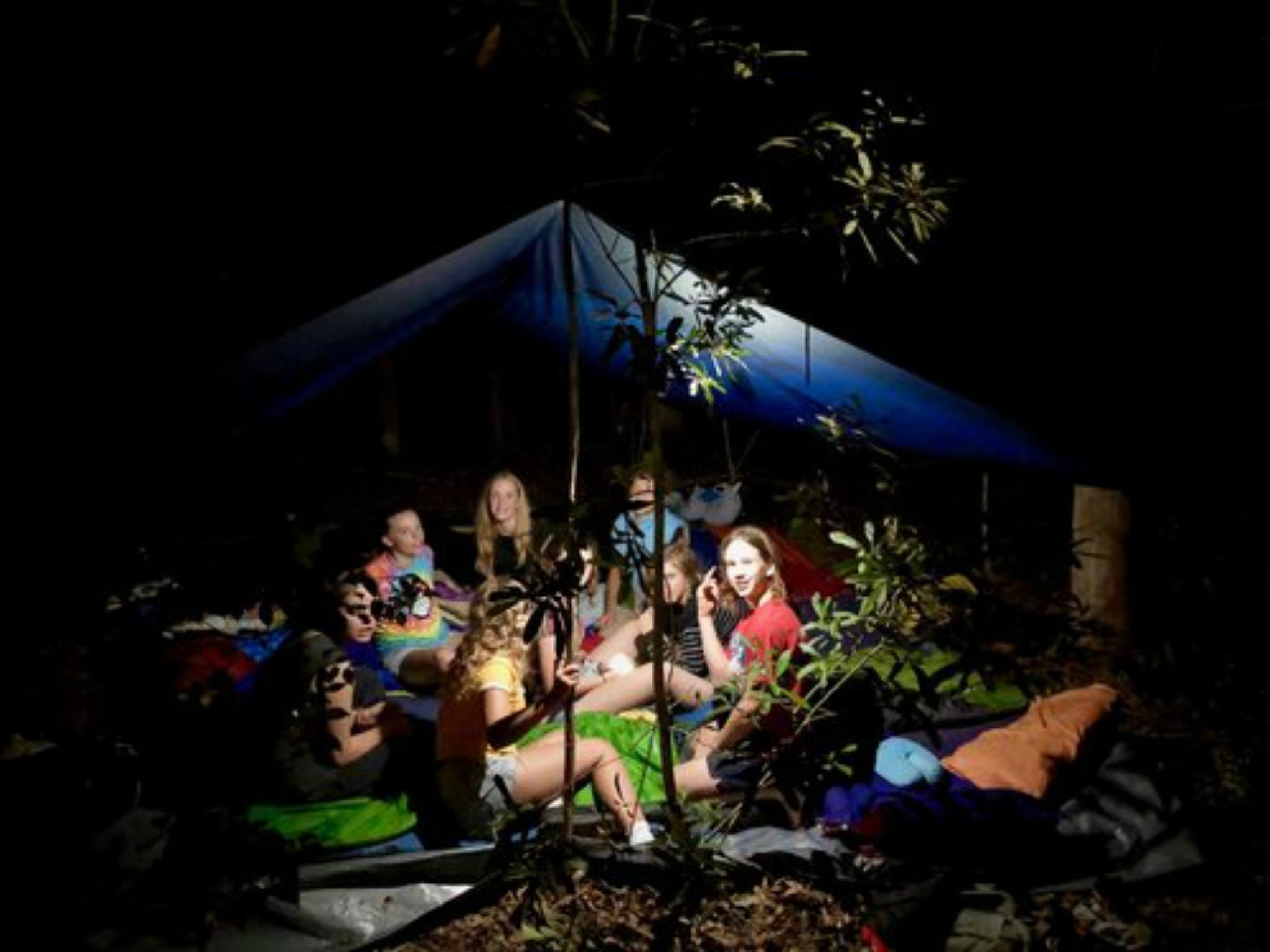 Summer  Family Nature Camp - Accommodation in Brisbane