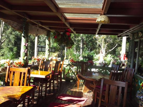Suzannes's Hideaway Cafe - Accommodation in Brisbane