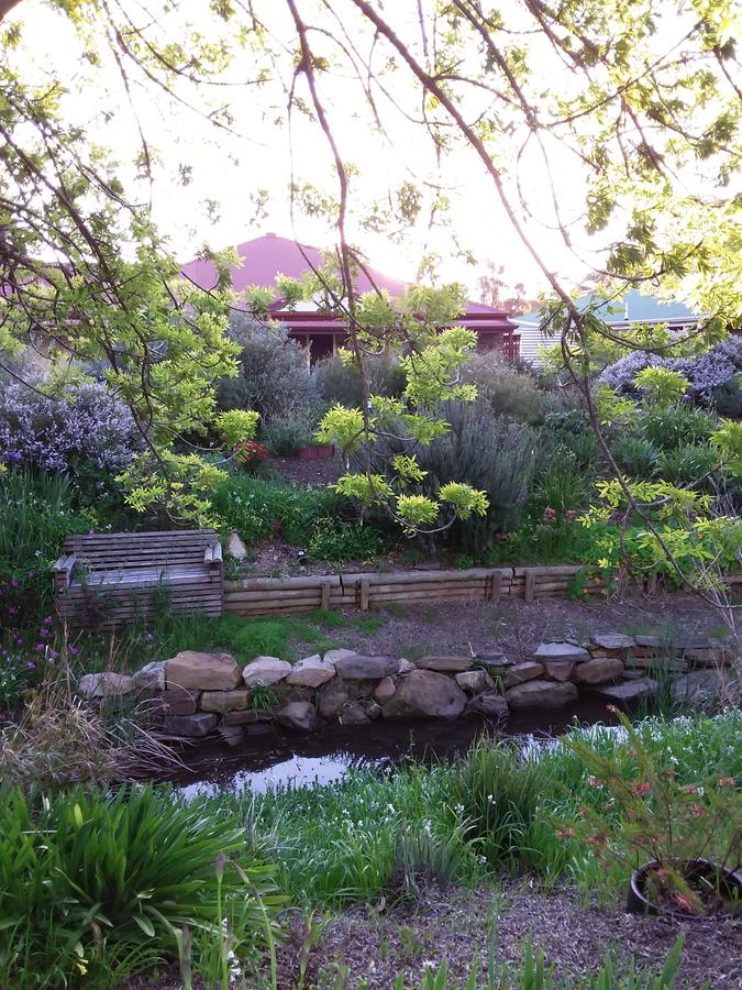 Frog Song at Willunga - Accommodation in Brisbane