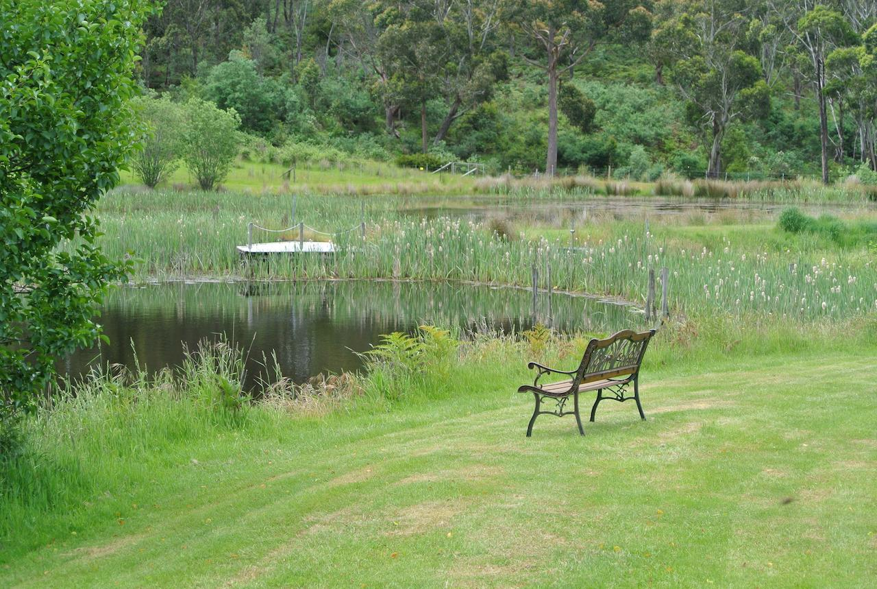 Hamlet Downs Country Accommodation - Accommodation in Brisbane