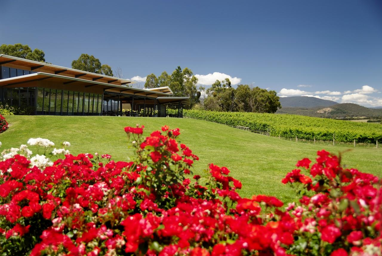 Balgownie Estate Vineyard Resort  Spa - Accommodation in Brisbane