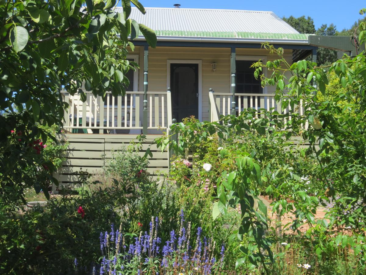 Walnut Cottage via Leongatha - Accommodation in Brisbane