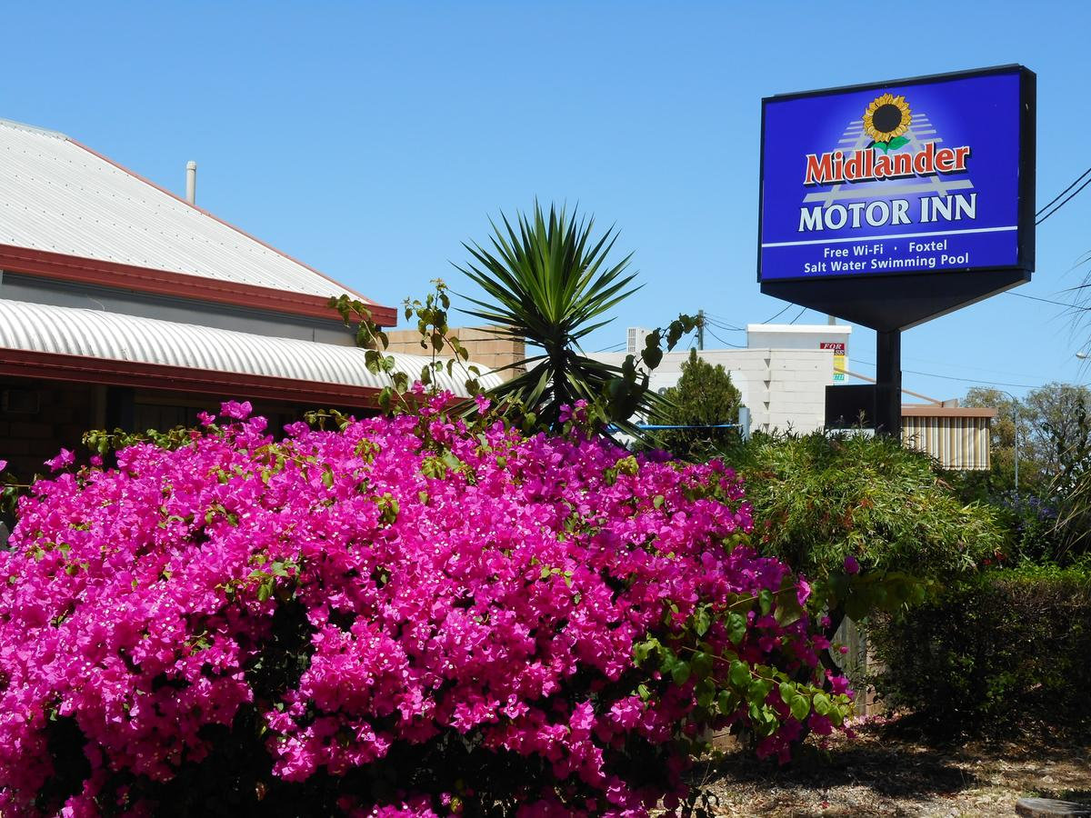 Midlander Motor Inn - Accommodation in Brisbane